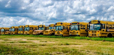 Pienso en amarillo | Texto y foto tomada 10 /sept / 16 en algún lugar de Texas (Interestatal 35) camino de Cotulla | Vagamundos