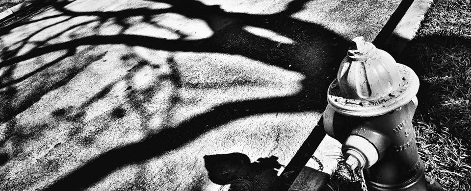 sombras-vagamundos